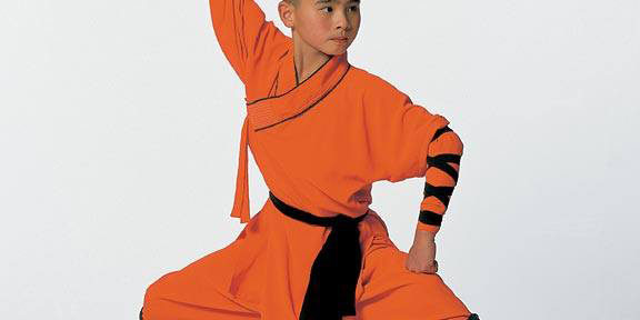 5 Facts About Shaolin Martial Tribes