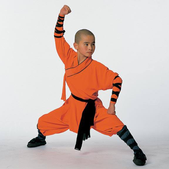5 facts about shaolin martial tribes. Black Bedroom Furniture Sets. Home Design Ideas