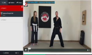 online martial arts course